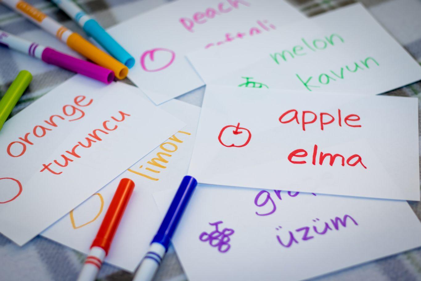 Crash course in Turkish language - Blog | EAIE