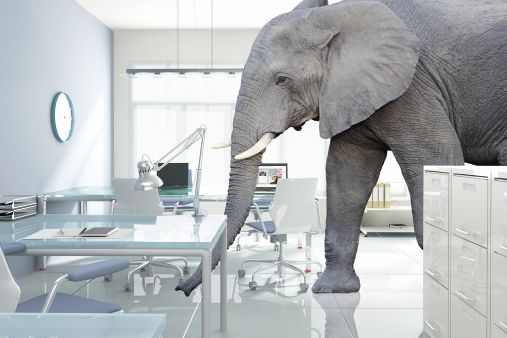 Image of blog post Voldemort and the elephant in the room