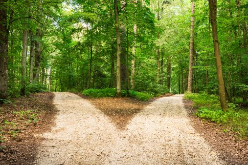 Image of blog post Learning internationalisation strategy: configuring appropriate support