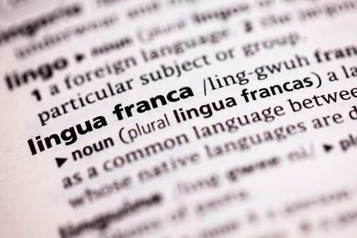 Image of blog post Trouble brewing for English-taught programmes